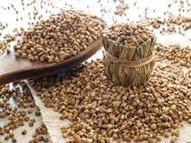 Farina di grano saraceno e cucchiaio di legno Fotografia Stock Libera da Diritti