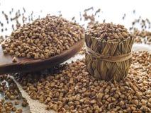 Farina di grano saraceno e cucchiaio di legno Immagine Stock