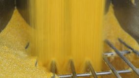 Farina di mais, fabbrica per la produzione dei fiocchi di mais archivi video