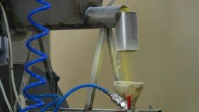 Farina di mais, fabbrica per la produzione dei fiocchi di mais stock footage
