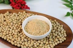 Farina di soia e soia Immagine Stock Libera da Diritti