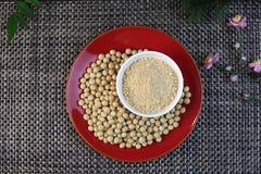 Farina di soia e soia Immagini Stock