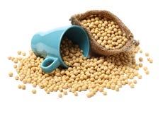 Farina di soia in una piccola borsa della iuta fotografia stock libera da diritti