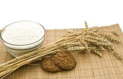 Farina e cereale. fotografia stock libera da diritti
