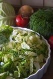 Farina vegetale Fotografia Stock