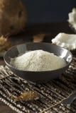 Farine blanche sèche organique crue de noix de coco images libres de droits