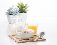 Farine d'avoine aromatisée par érable photos libres de droits