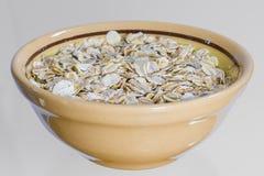 Farine d'avoine dans une cuvette d'argile Photo libre de droits