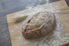 Farine de blé avec du pain chaud frais Photographie stock
