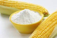Farine de maïs avec des grains Images stock