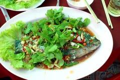 Farine de poisson Photographie stock