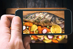 Farine de poisson photographiée Images stock