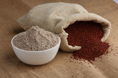 Farine de ragi Photo stock