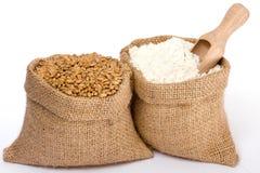 Farine et blé Photographie stock libre de droits