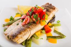 Farinha de peixes foto de stock royalty free