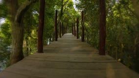 Farlig spring på en hög bro över sjön och skogen Cambodja Arkivbild