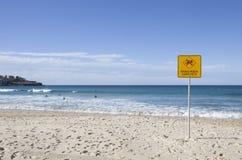 Farligt aktuellt tecken på den Bondi stranden, Sydney, Australien royaltyfri bild