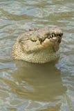 farligt vatten Royaltyfri Bild