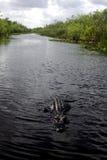 farligt vatten Royaltyfria Bilder