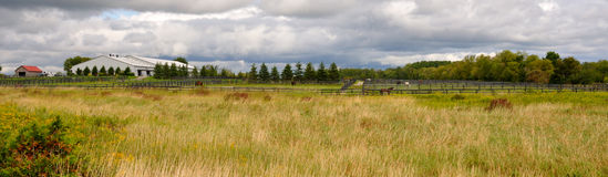 Farm. A horse farm in coutryside Royalty Free Stock Photography