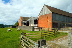 Farm. View of farm sheds from a field Stock Image
