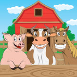 Farm. Vector illustration of pigs cows and horses Stock Photo