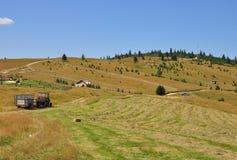 Farm. A farm in Sibiu county,Romania royalty free stock image