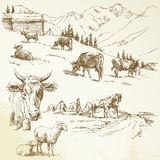 Farm. Milker, meadow - hand drawn set Royalty Free Stock Images