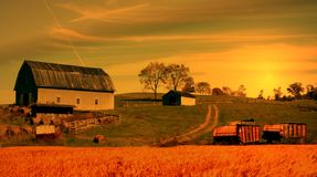 Farm. With wheat field and wagons