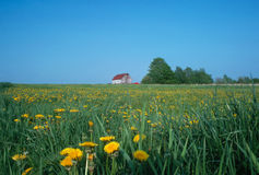 FARM. In Pensylvania with barn and truck Royalty Free Stock Images