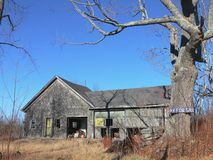 Farm: abandoned barn. New England abandoned barn with dead tree and hay for sale sign Royalty Free Stock Image