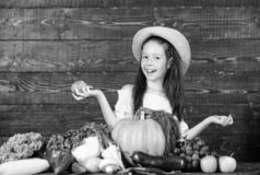 Farm activities for kids. Traditional farm market. Child celebrate harvesting. Girl kid farm market with fall harvest royalty free stock images