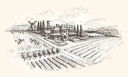 Farm, agriculture or vineyards sketch. Vector illustration Royalty Free Stock Image
