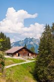 Farm in summer in the Swiss Alps. Farm in the alpine mountains in Switzerland royalty free stock images