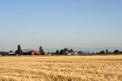 Farm And Field - Stock Image