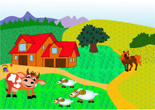 Farm with animal Stock Image