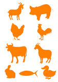 Farm animal. Set of farm animal shapes Stock Image