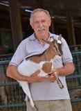 Farm animal care. Stock Photos