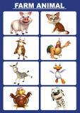 Farm animal chart. 3d rendered illustration of farm animal chart Royalty Free Stock Photos