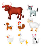 Farm animal collection set Royalty Free Stock Images