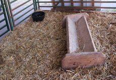 Farm animal feeder Royalty Free Stock Image