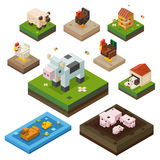 Farm animal isometry color set Stock Images