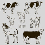 Farm animal marker sketch drawing Stock Photography