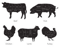Farm animal meat cuts. Vector set of farm animal cuts Royalty Free Stock Images