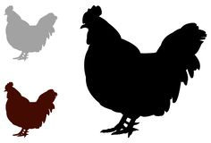 Farm animal - poultry, chicken silhouette. Vector file of farm animal - poultry, chicken silhouette Royalty Free Stock Photo