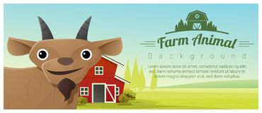 Farm animal and Rural landscape background with goat Stock Photos