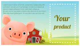 Farm animal and Rural landscape background with pig Royalty Free Stock Image