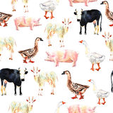 Farm animal seamless pattern drawing in watercolor. Cow, duck, g Stock Images