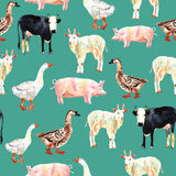 Farm animal seamless pattern drawing in watercolor. Cow, duck, g Royalty Free Stock Photography