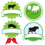 Farm animal signs Stock Image